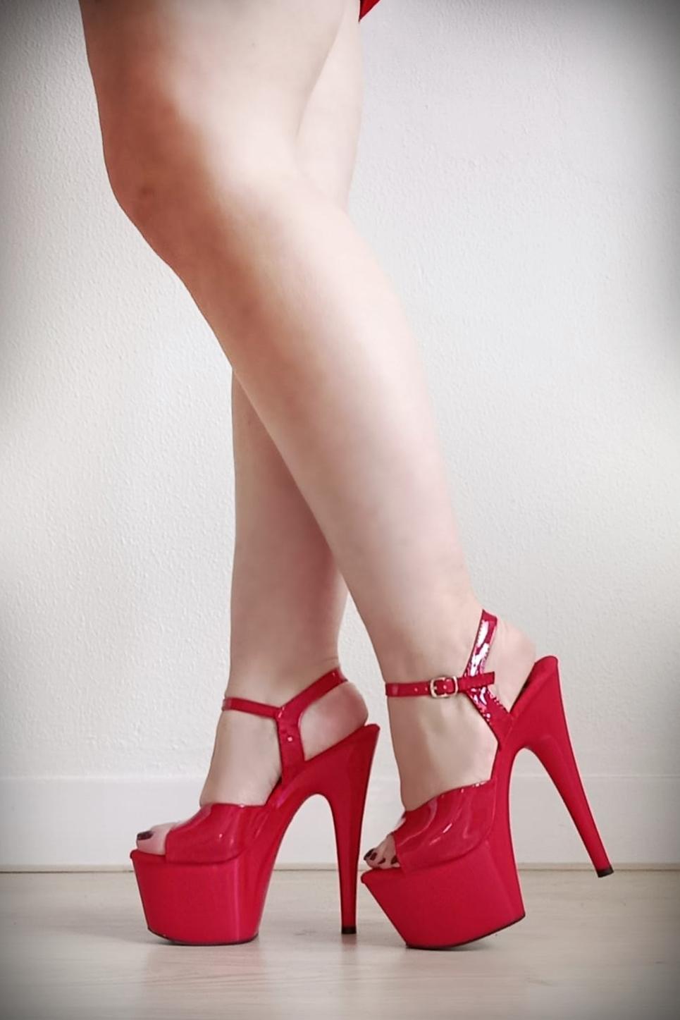 Basic rode danshakken